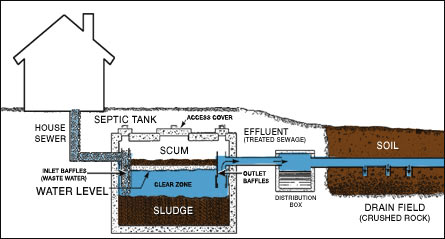 Components of a septic system cesspool and septic for Household septic tank design