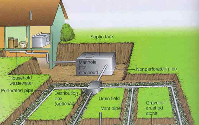Components of a septic system cesspool and septic for Septic tank basics